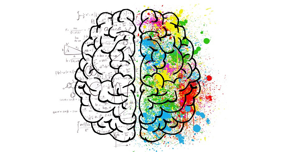 Prenatal Iron & Folic Acid is essential too in the brain development