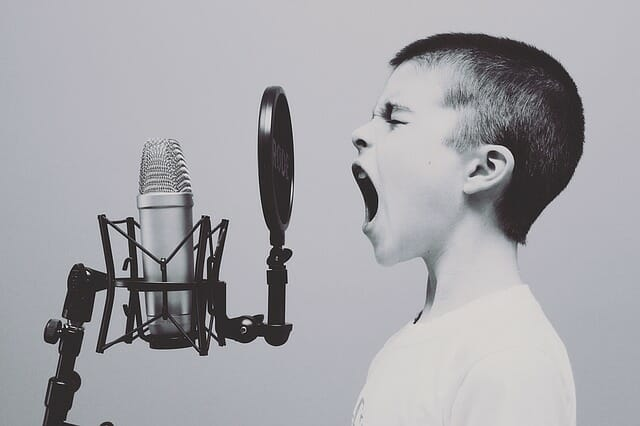 Language Delay in Toddlers- Effects on School Performance and Language Development at Age 8