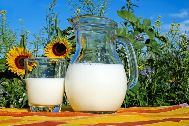 Cow's milk protein allergy in kids